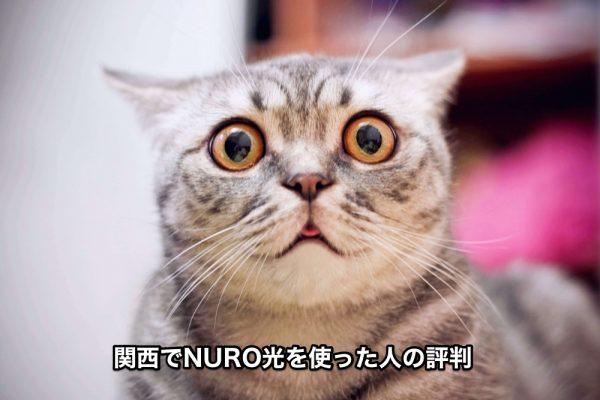 NURO光関西の評判